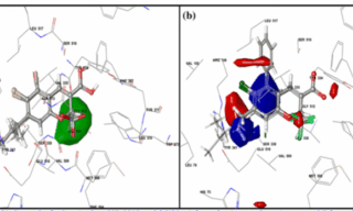 '3D-QSAR Service for Drug Design and Screening' image