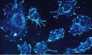 'New Nanoparticle Can Kill Cancer Cells Efficiently And Selectively' image