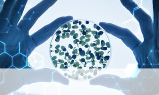 'Short-Chain Fatty Acid Analysis to Aid Gut Microbiota Research' image